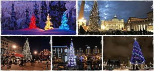 Most Beautiful Christmas Trees in the World | Pinterest