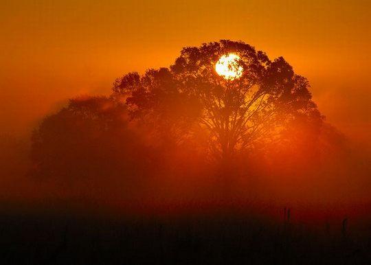 Φωτογραφία με Ανατολή Ηλίου (1)