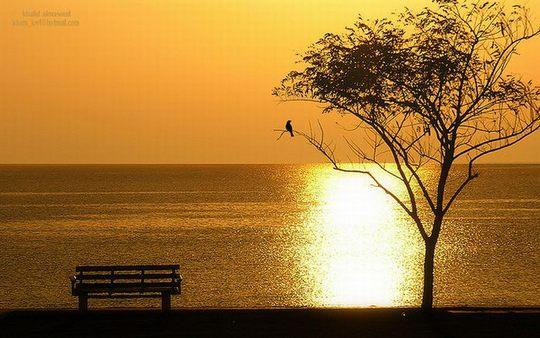 Φωτογραφία με Ανατολή Ηλίου (7)